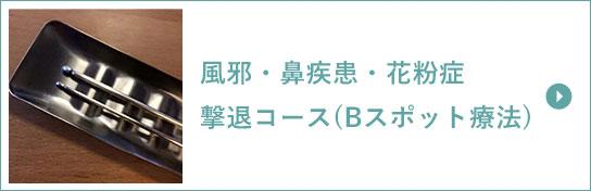 風邪・鼻疾患・花粉症撃退コース(Bスポット療法)
